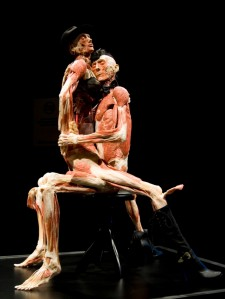 Two plastinated human specimens arranged in love-making posture are seen during the exhibit's unveiling in Berlin