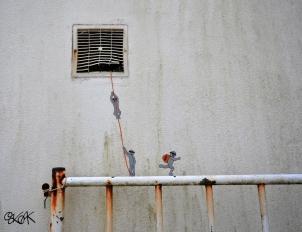 La Street Art di Oakoak
