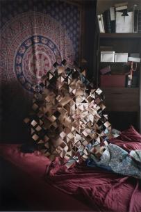 Sesso e arte le opere di Sarah Anne Johnson per Wonderlust Puzzle Pieces