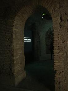 Musia a Roma (13)