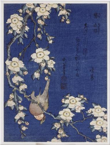 Hokusai, Bullfinch and Weeping Cherry, 1834